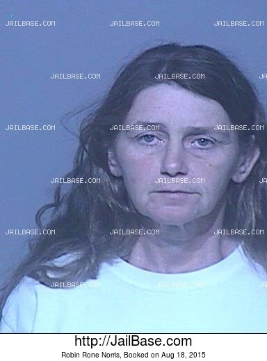 ROBIN RONE NORRIS mugshot picture