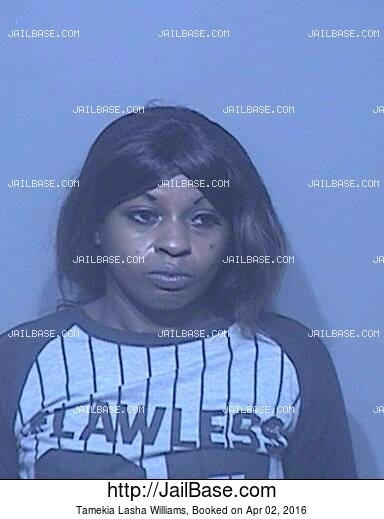 TAMEKIA LASHA WILLIAMS mugshot picture