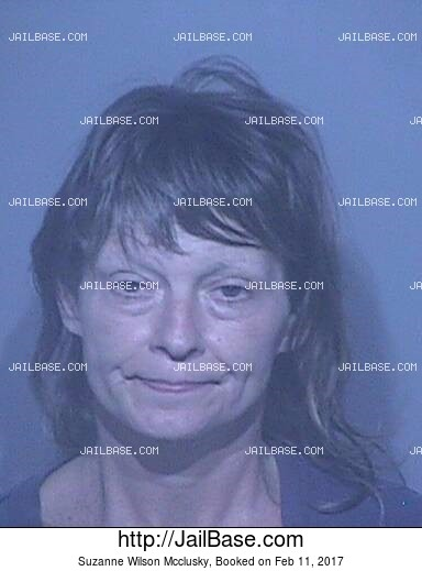 SUZANNE WILSON MCCLUSKY mugshot picture