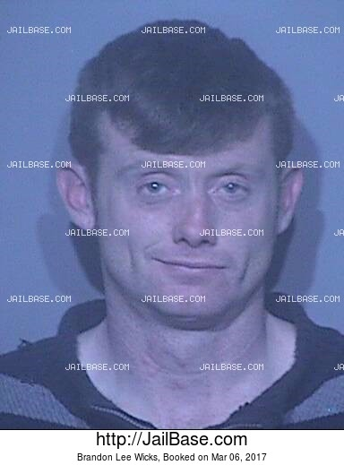 BRANDON LEE WICKS mugshot picture