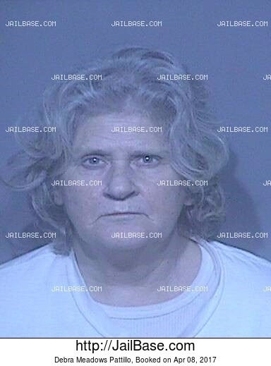DEBRA MEADOWS PATTILLO mugshot picture