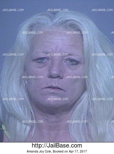 AMANDA JOY COLE mugshot picture