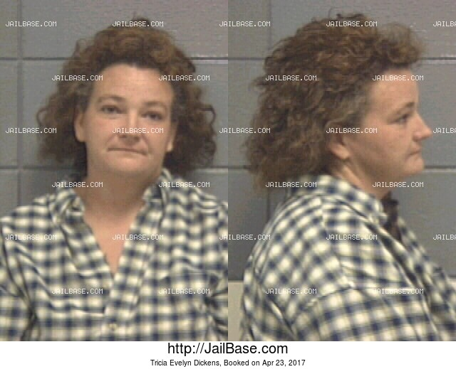 TRICIA EVELYN DICKENS mugshot picture