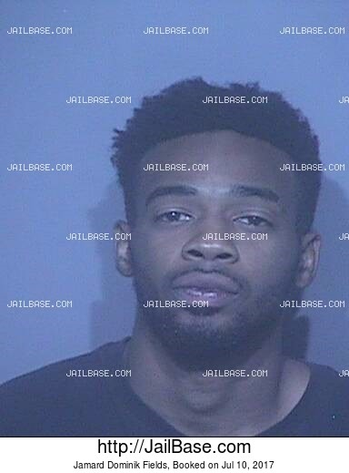 JAMARD DOMINIK FIELDS mugshot picture