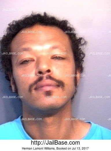 HERMAN LAMONT WILLIAMS mugshot picture