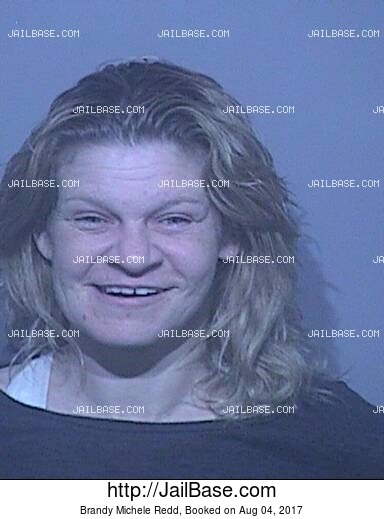 BRANDY MICHELE REDD mugshot picture