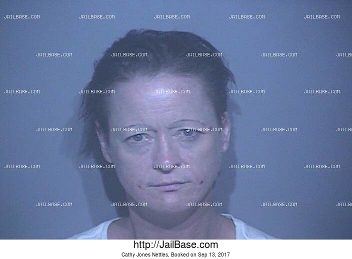 CATHY JONES NETTLES mugshot picture