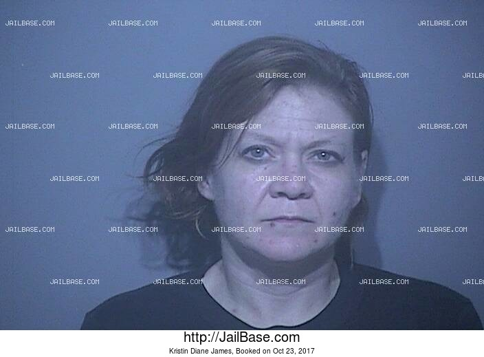 KRISTIN DIANE JAMES mugshot picture