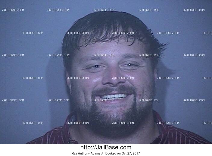 RAY ANTHONY ADAMS JR mugshot picture