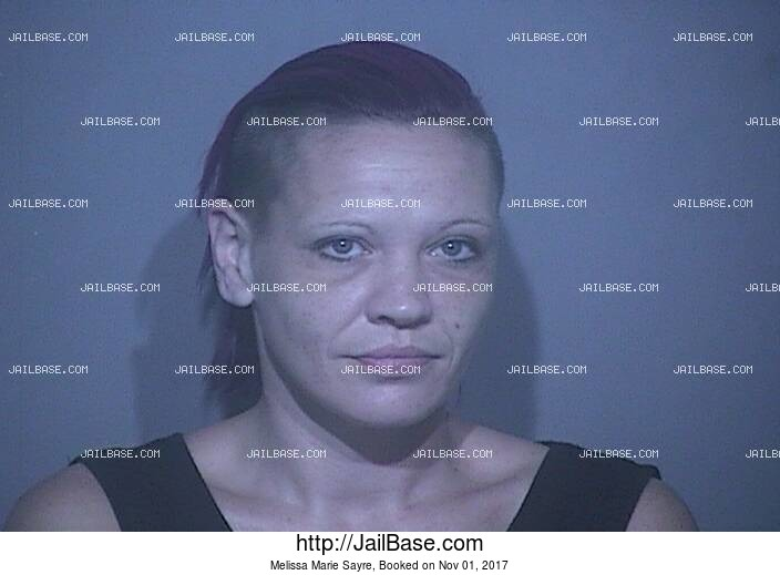 MELISSA MARIE SAYRE mugshot picture