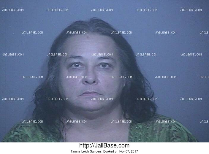 TAMMY LEIGH SANDERS mugshot picture