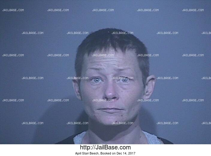 APRIL STARR BEECH mugshot picture