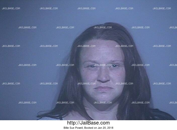 BILLIE SUE POWELL mugshot picture