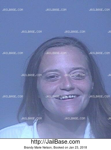 BRANDY MARIE NELSON mugshot picture