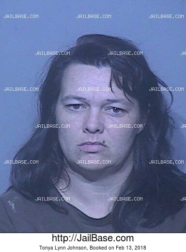 TONYA LYNN JOHNSON mugshot picture