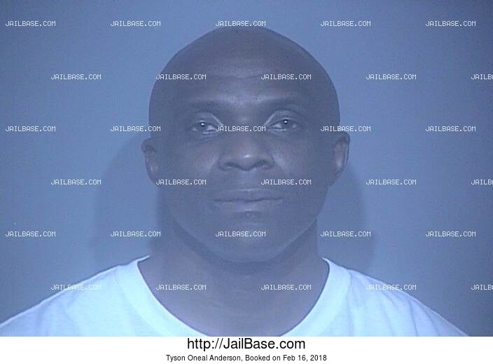 TYSON ONEAL ANDERSON mugshot picture