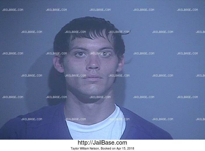 TAYLOR WILLIAM NELSON mugshot picture