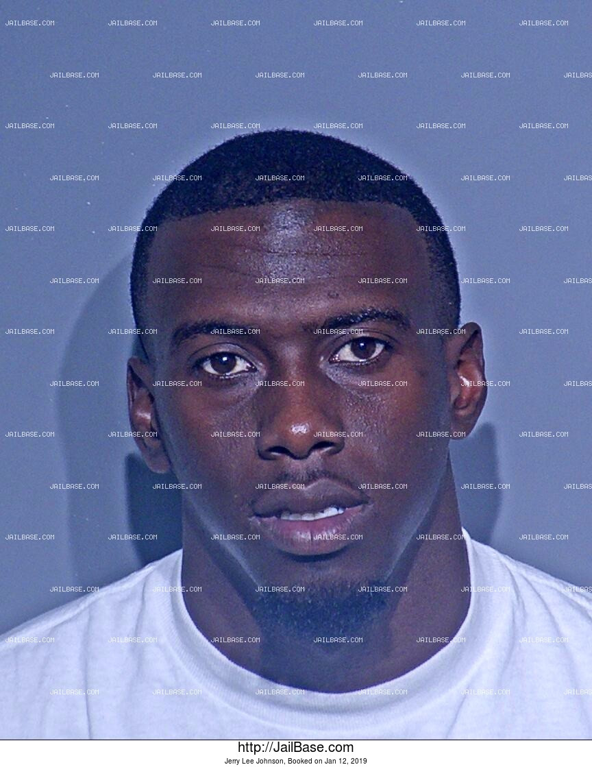 JERRY LEE JOHNSON mugshot picture