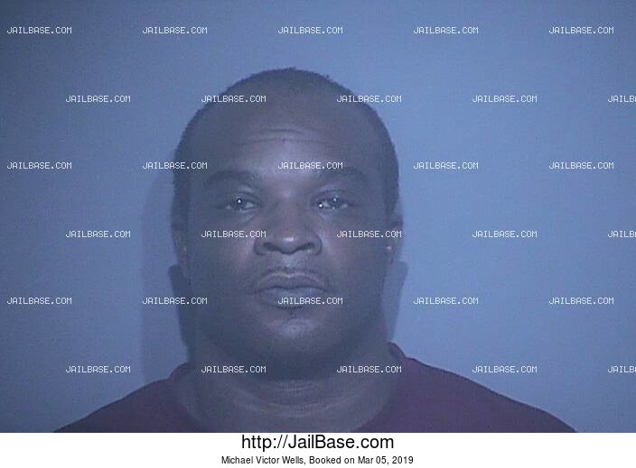 MICHAEL VICTOR WELLS mugshot picture