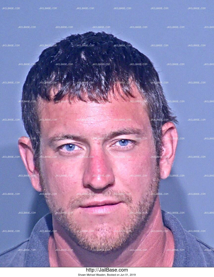 SHAWN MICHAEL WASDEN mugshot picture