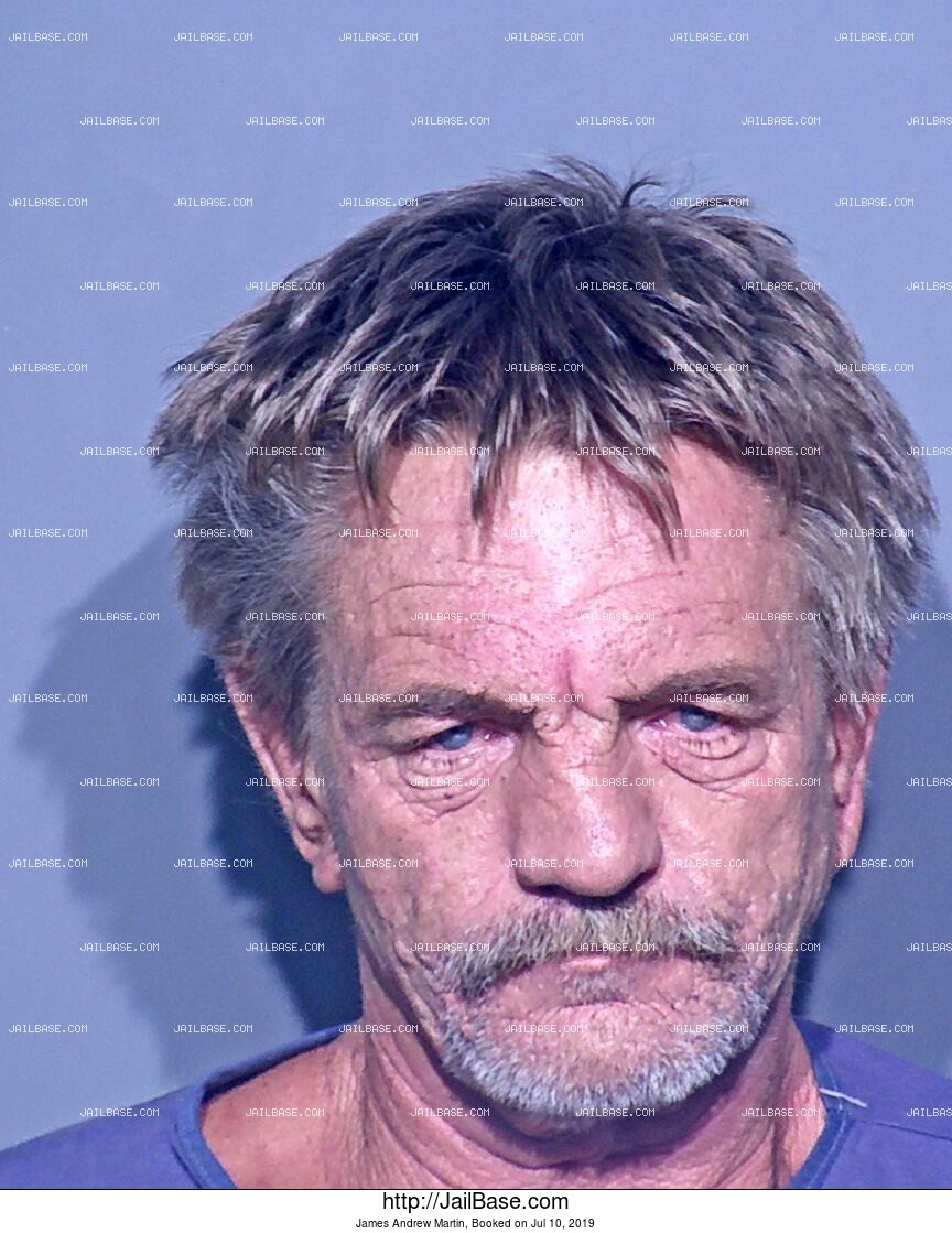 JAMES ANDREW MARTIN mugshot picture