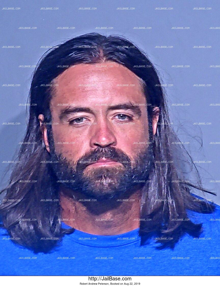 ROBERT ANDREW PETERSON mugshot picture