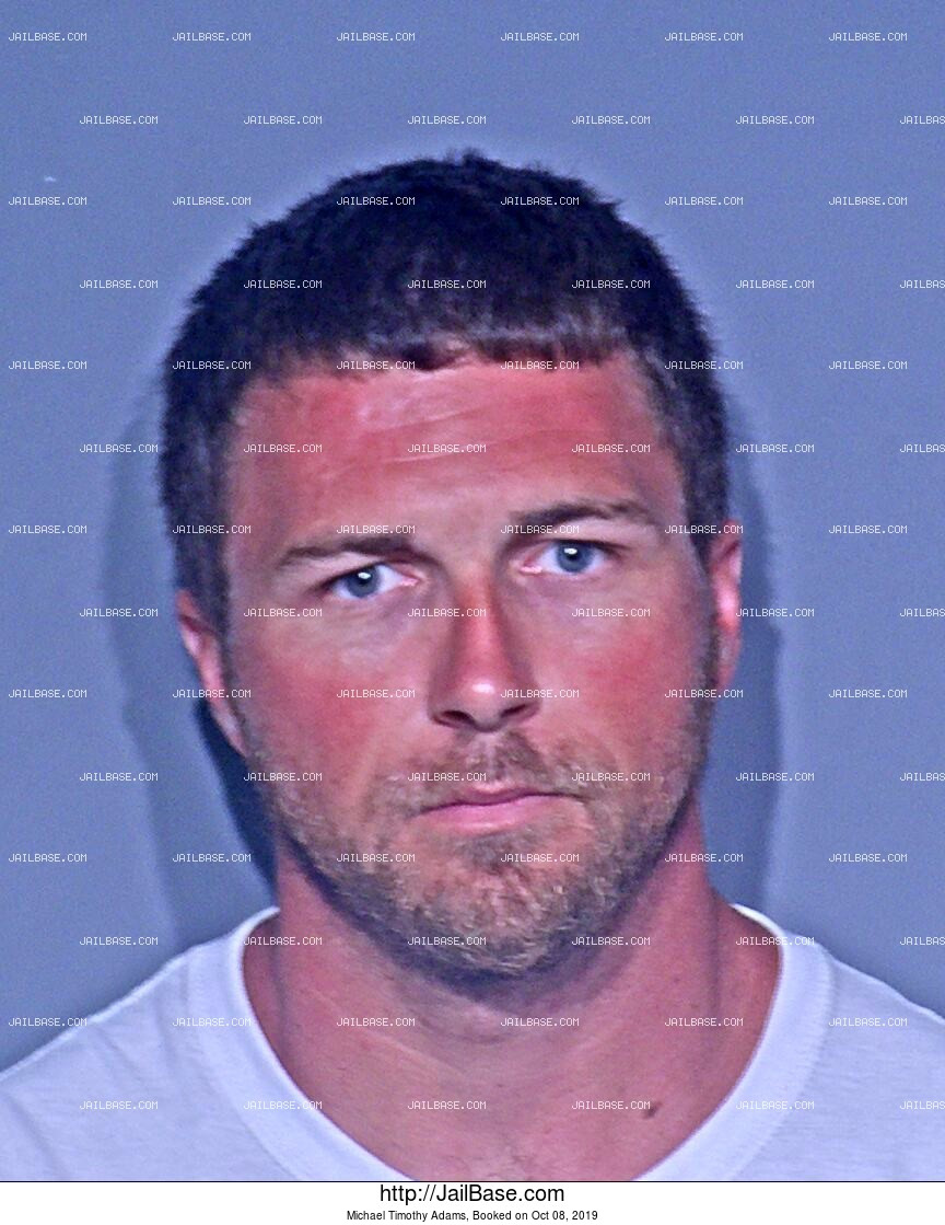 MICHAEL TIMOTHY ADAMS mugshot picture