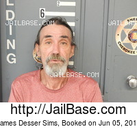 JAMES DESSER SIMS mugshot picture