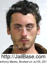Anthony Meeks mugshot picture