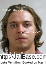 MICHAEL LUKE VERMILLION mugshot picture