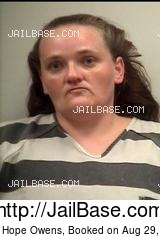 KRISTY HOPE OWENS mugshot picture