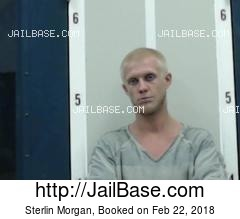 STERLIN MORGAN mugshot picture