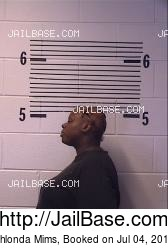 Shlonda Mims mugshot picture