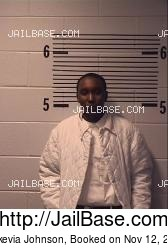 Markevia Johnson mugshot picture