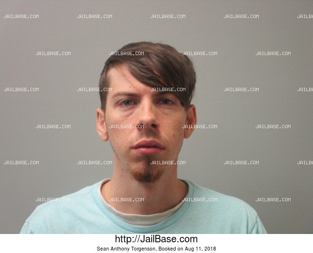 SEAN ANTHONY TORGENSON mugshot picture