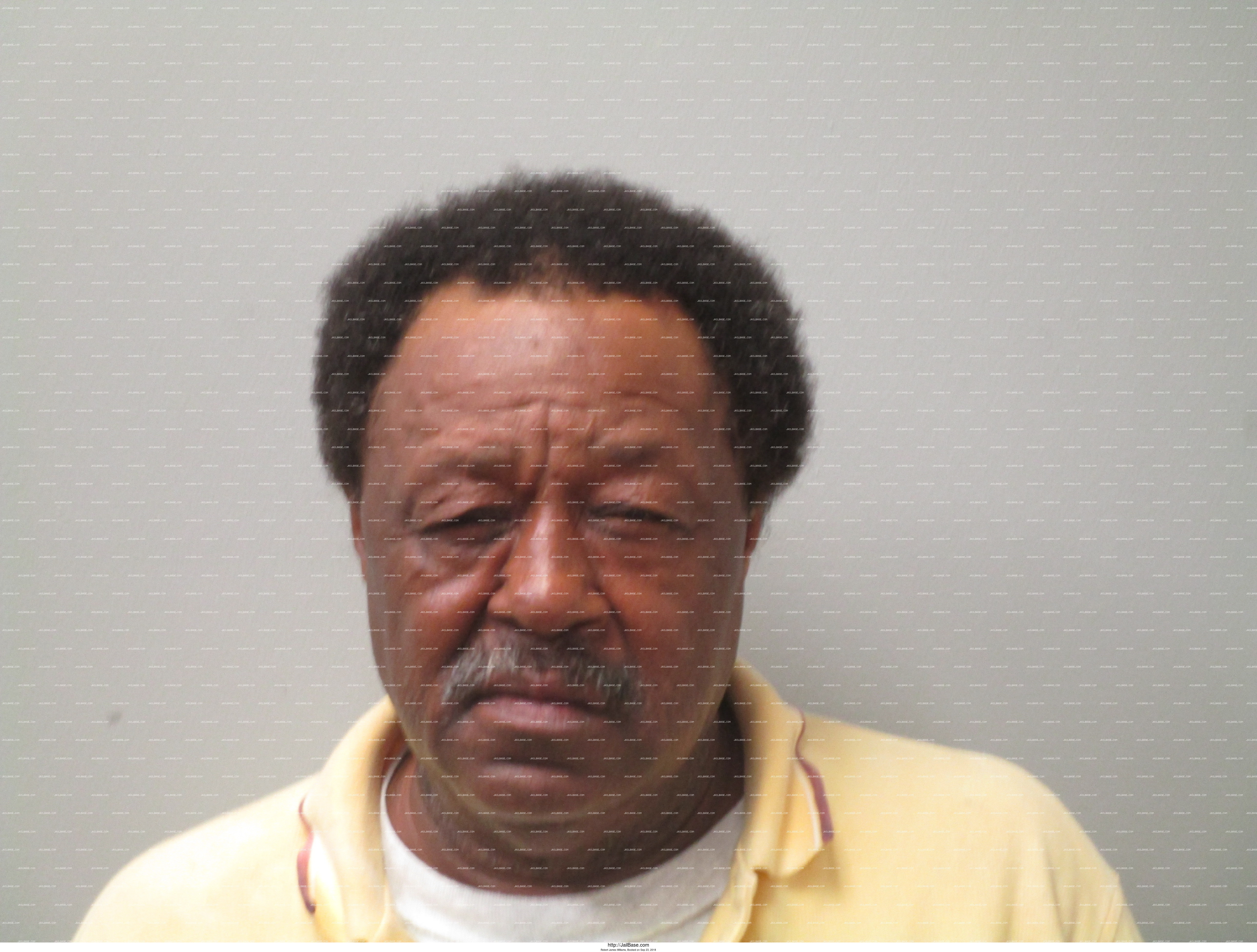 ROBERT JAMES WILLIAMS mugshot picture