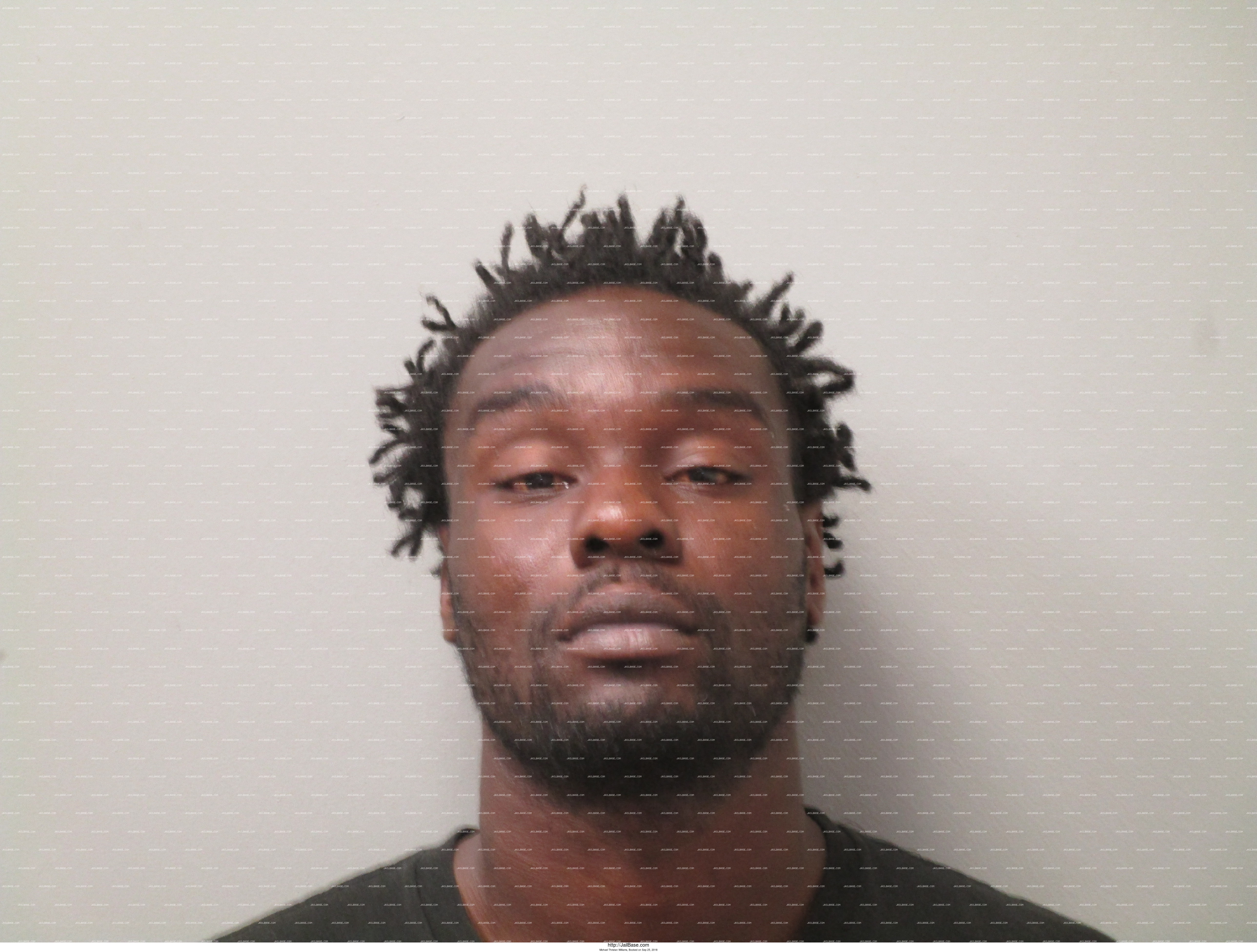 MICHAEL THRISTAN WILLIAMS mugshot picture