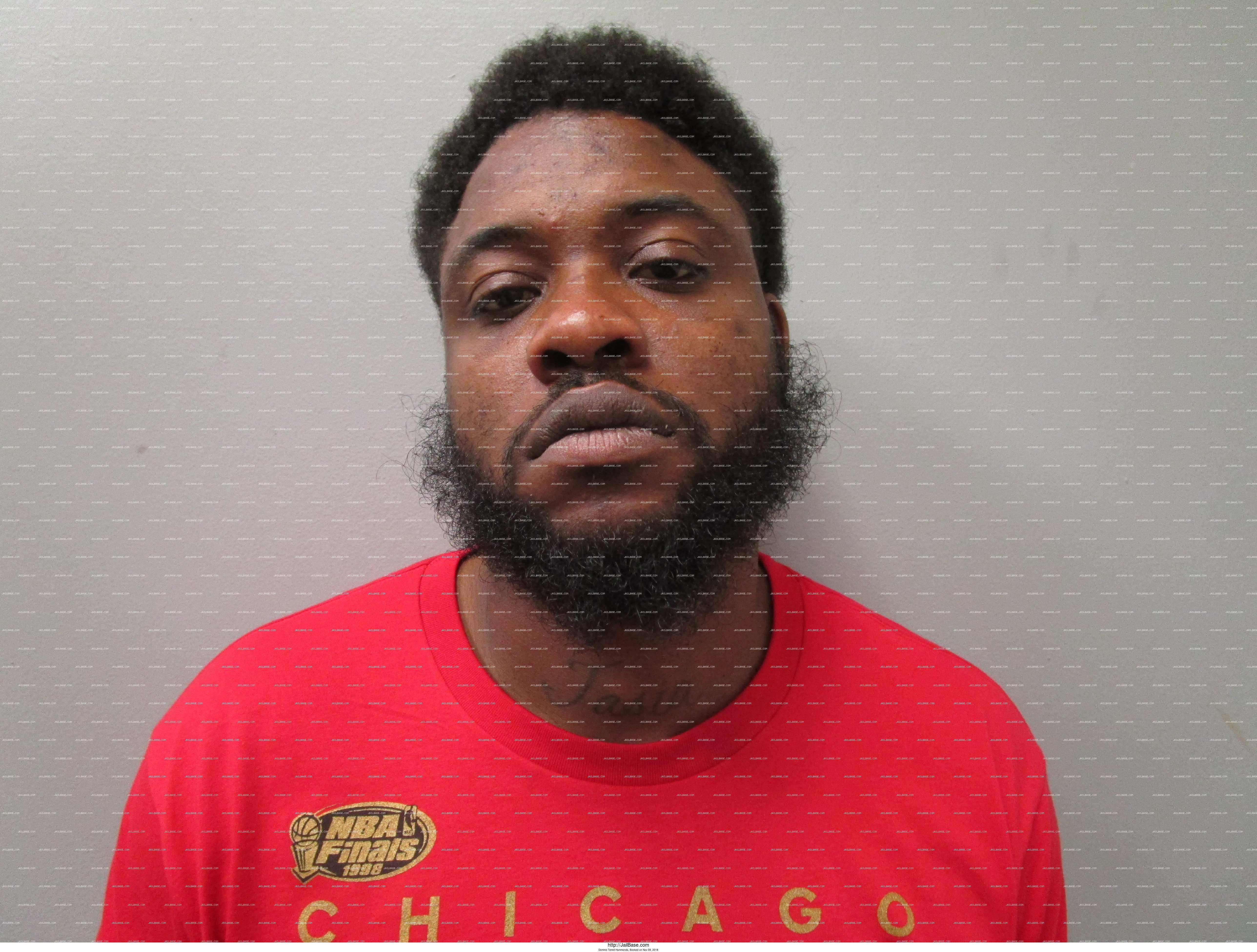 DOMINIC TERRELL HAMMONDS mugshot picture