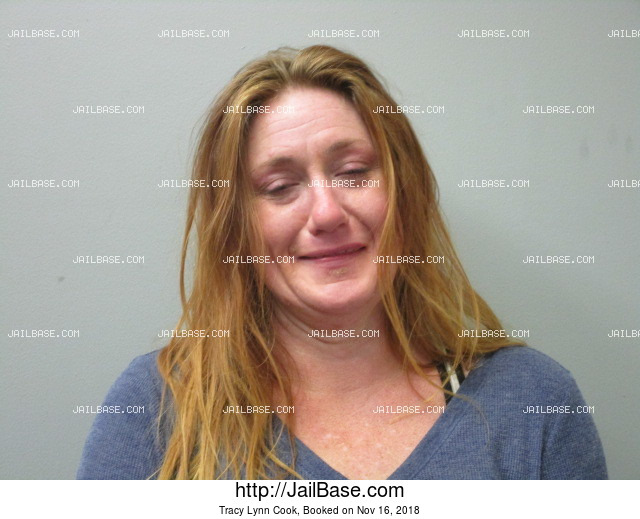 TRACY LYNN COOK mugshot picture