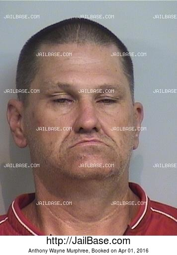ANTHONY WAYNE MURPHREE mugshot picture