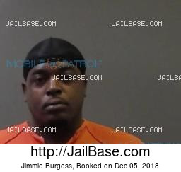 Jimmie Burgess mugshot picture