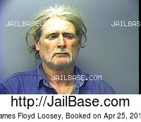 JAMES FLOYD LOOSEY mugshot picture