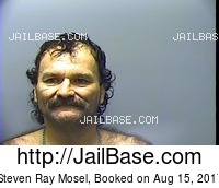 STEVEN RAY MOSEL mugshot picture