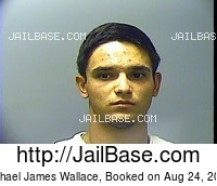 MICHAEL JAMES WALLACE mugshot picture