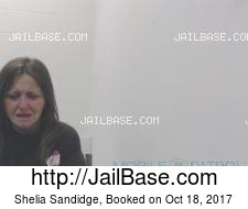 Shelia Sandidge mugshot picture