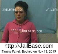 TAMMY FARRELL mugshot picture