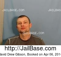 DAVID DREW GIBSON mugshot picture
