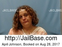 APRIL JOHNSON mugshot picture