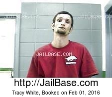 Tracy White mugshot picture