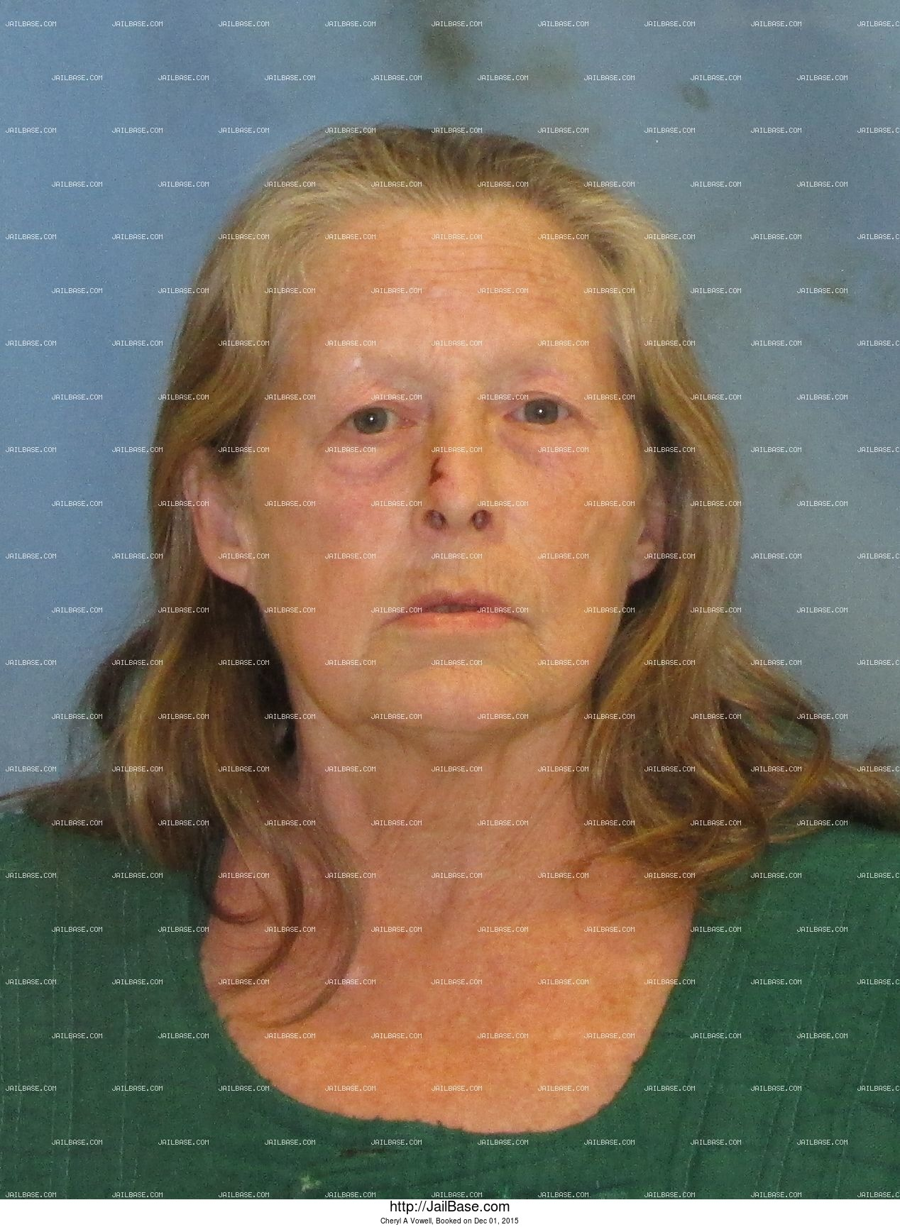 Cheryl A Vowell mugshot picture